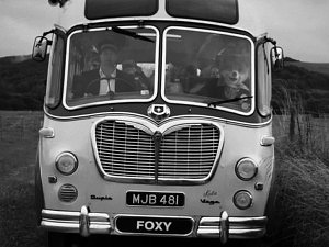 Foxy Bingo On Tour